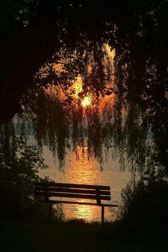 Ивушки ветви купали в закате... (стихи Натальи Зарубиной (Дьяковой), муз. и исп. Евгения Никитина)