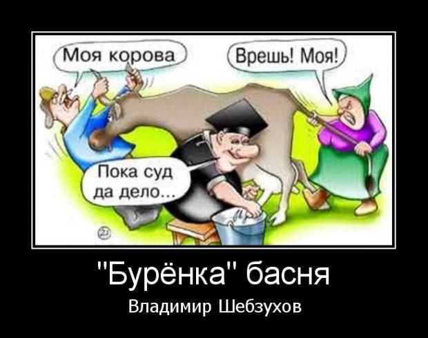 «Бурёнка» (Владимир Шебзухов)
