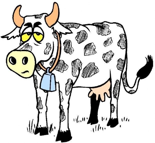 Корова картинки анимашки