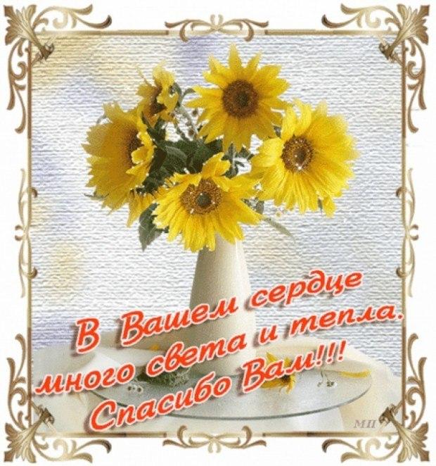 Картинки с пожеланиями спасибо за твое внимание женщине, открытки