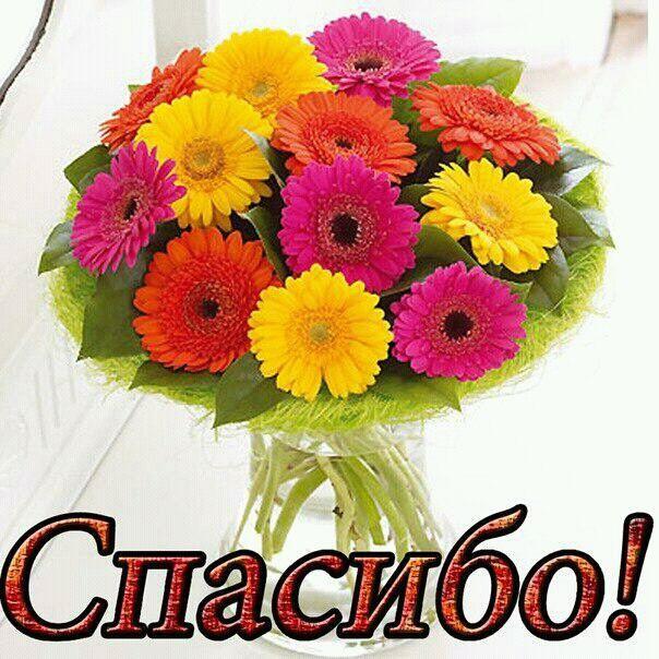 картинки и фото спасибо с цветами