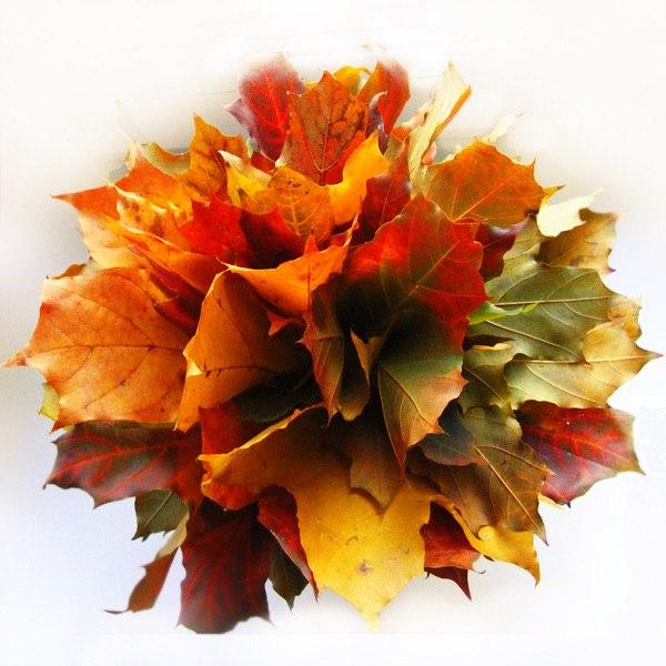 букеты с осенними листьями картинки найти
