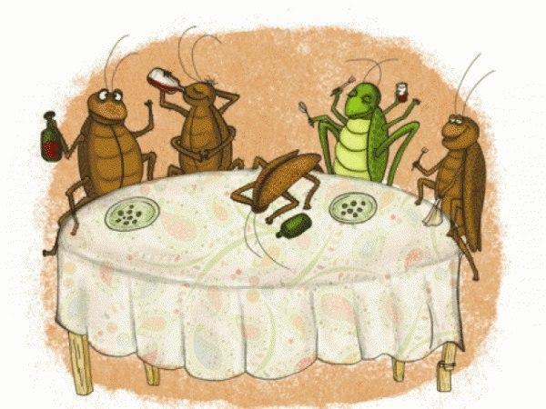 Открытка день, смешные картинки с тараканом
