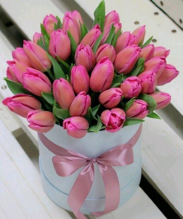 b585752c2fb Тюльпаны...(читает Светлана Калинина 5)... ~ Проза (Рассказ)