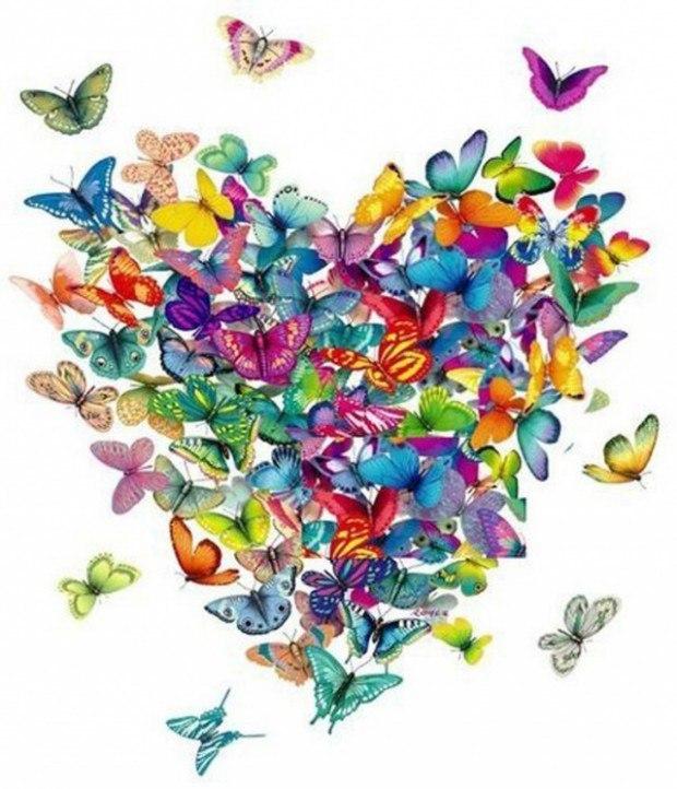 Порхающие бабочки из открытки, прикольные кошек котят