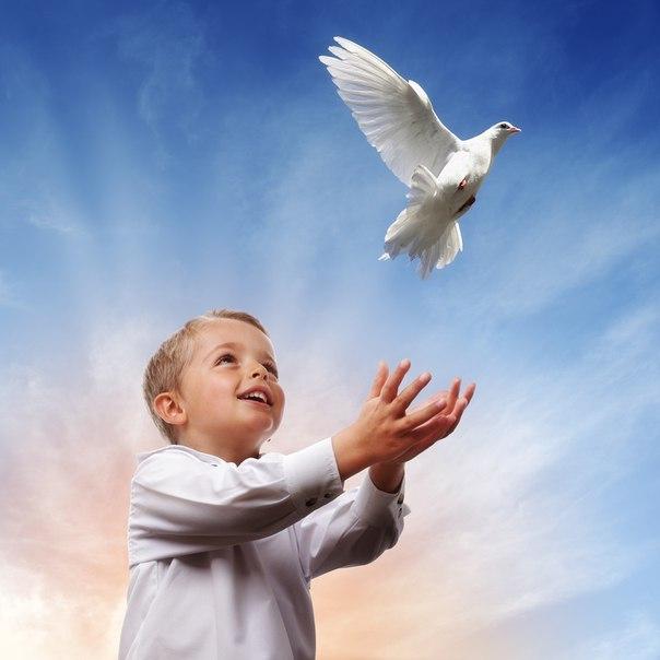 Картинка с мирным небом, открыток бурнаковской
