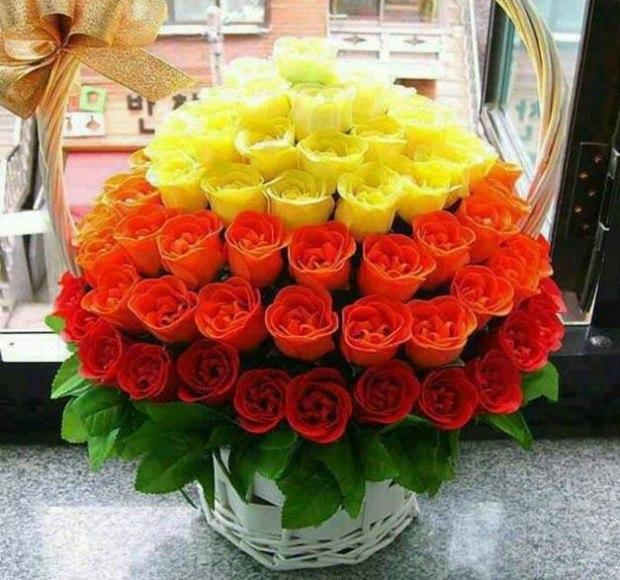 Самые красивые цветы мира букеты