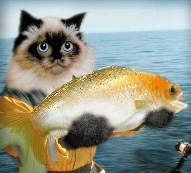 Открытка спасибо за рыбу