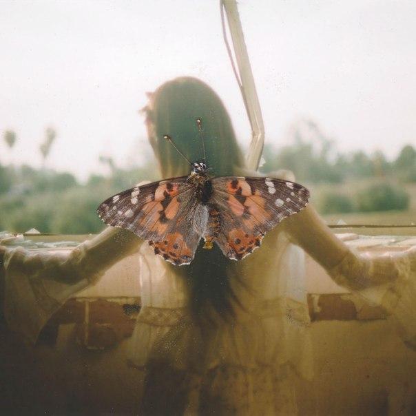 Если женщине приснится, что белая бабочка влетела в ее комнату — это означает, что желания ее не сбудутся.