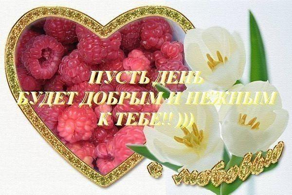 Прекрасного дня целую тебя