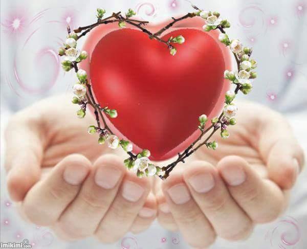 картинка сердце в ладошке анимация красотки кавказской