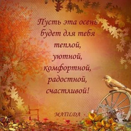 Осенние пожелания друзьям в стихах короткие