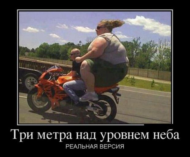 МЕЧТАНИЯ ЛЕТНИХ АФОРИЗМОВ...