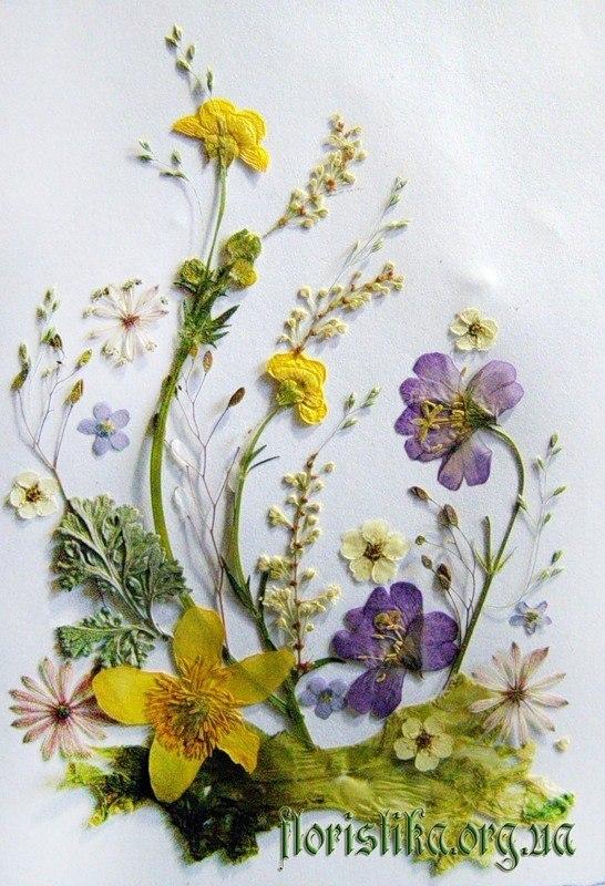 Открытки с техникой флористики, наталью именинами