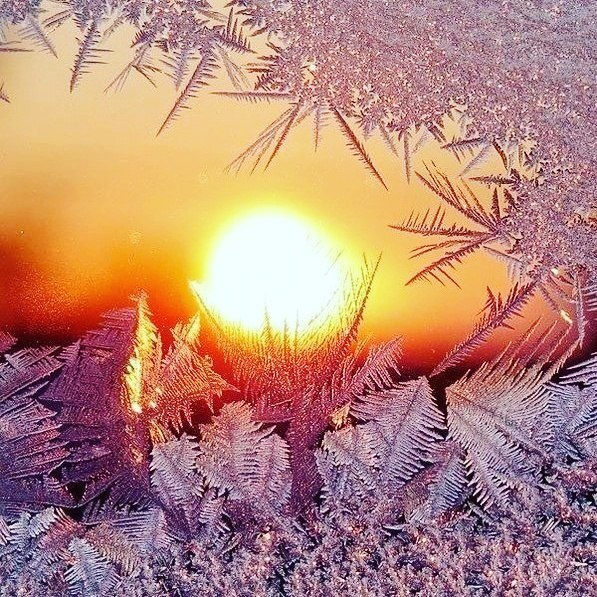 нас много света и тепла картинки необходимо предварительно проколоть