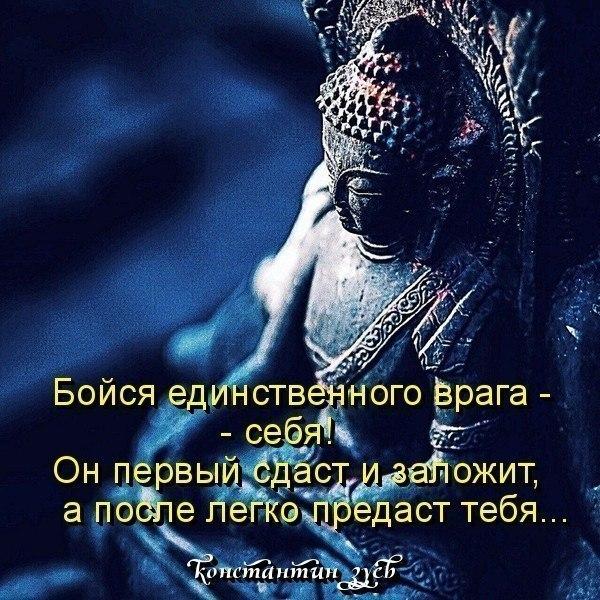 ПОСЛЕДНИЕ АФОРИЗМЫ ЯНВАРЯ...