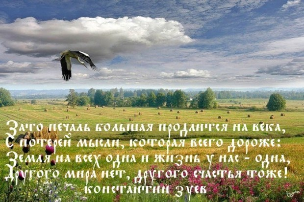 ОСЕННЯЯ МЕЛАНХОЛИЯ...