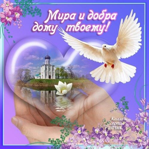 Картинки мира счастья добра, крещением руси когда