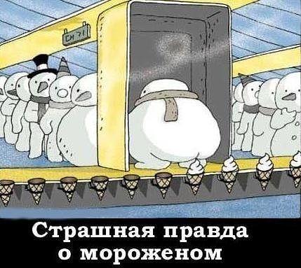 МОРОЗЕЦ СТУДИТ АФОРИЗМЫ...