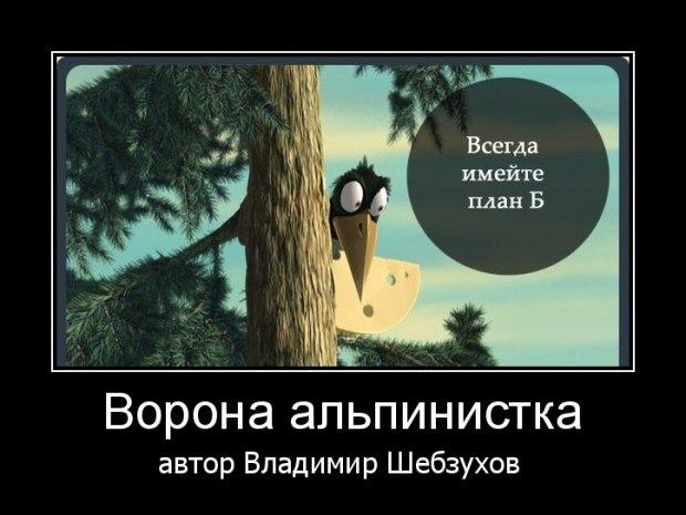 «Ворона альпинистка»  (Владимир Шебзухов)
