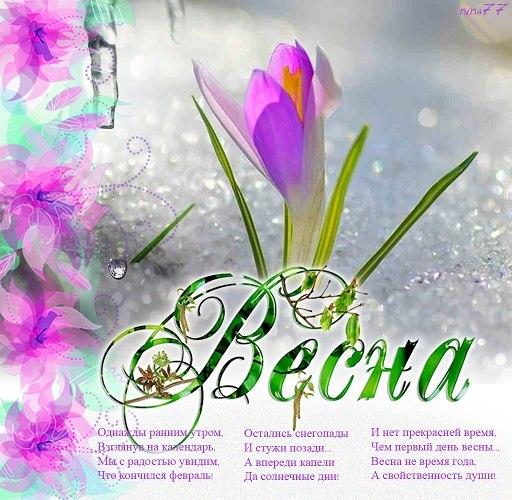 Фото поздравления с 1 днем весны