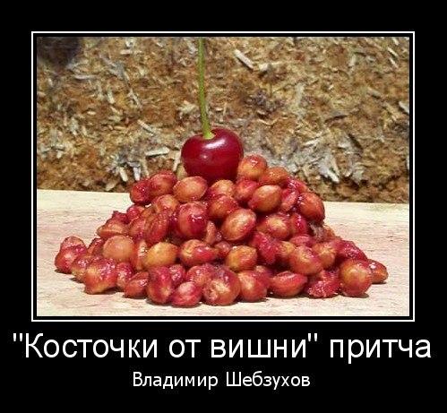 Косточки от вишни  (Владимир Шебзухов)