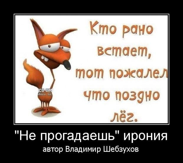 «Не прогадаешь» (Владимир Шебзухов)
