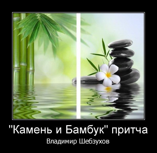 Камень и Бамбук