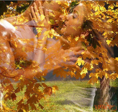 Листья жёлтые срывая скачать песню