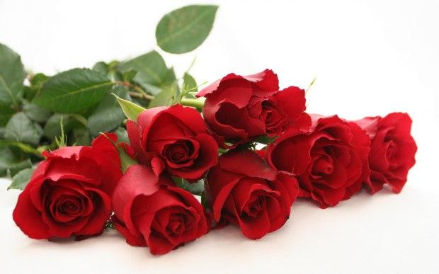 Стихи красные розы