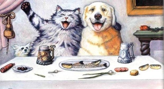 Почему кошки и собаки не дружат