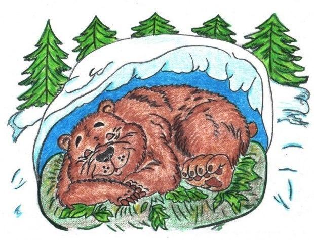Картинка для раскрашивания мишка в берлоге