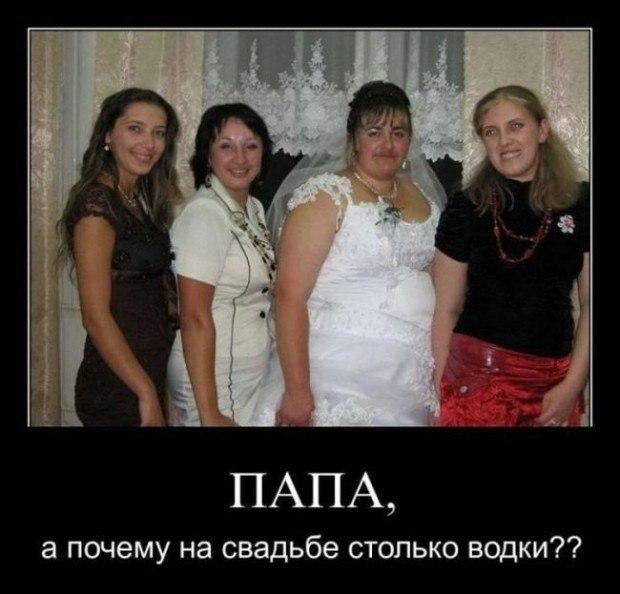 СУДЬБА - СВОДНИЦА... ( шутка )
