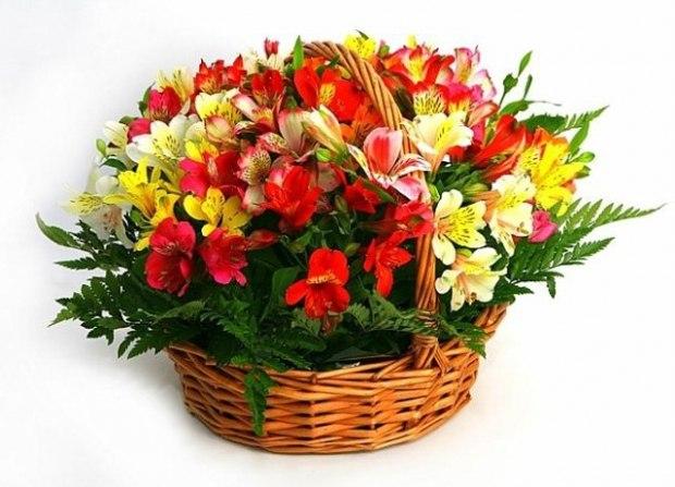 Невесты, цветы на 55 лет женщине купить