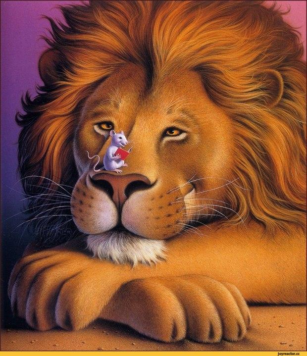 Прикольный открытки льва