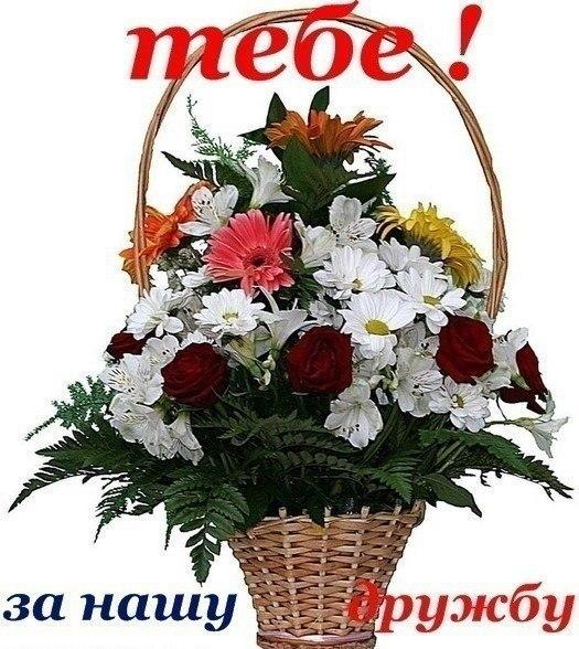 Цветы для лиды фото