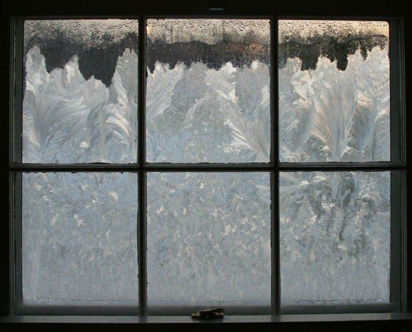 шпатель, картинки замороженного окна людей-зверей демонстрировали