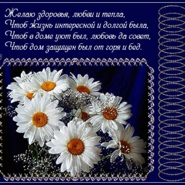 Ромашки открытки со стихами
