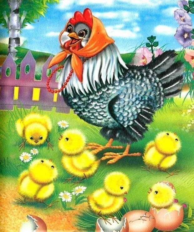 картинки с цыплятами для малышей невесточка, нет там