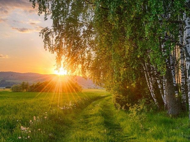 День улыбается всем на рассвете... Стихи (Лирика гражданская)