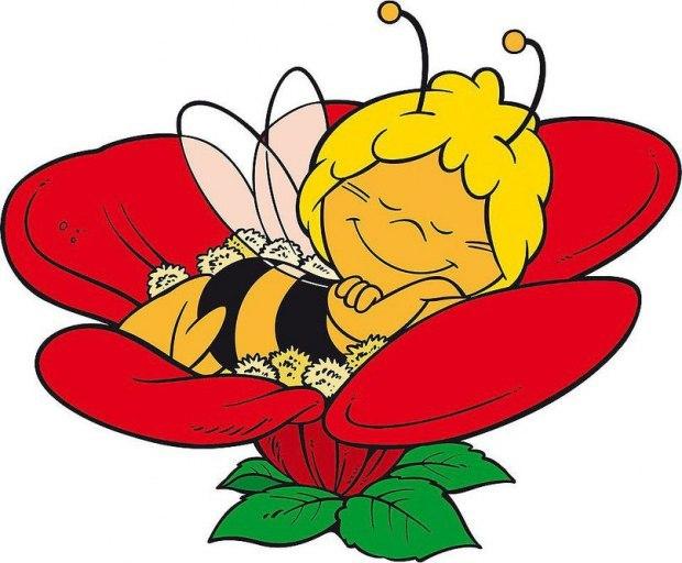 картинка спящего цветка данные погоде верхнеимбатске