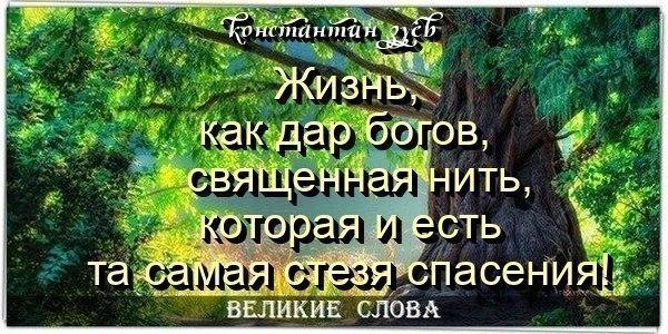 АФОРИЗМЫ УХОДЯТ В ВЕСНУ...