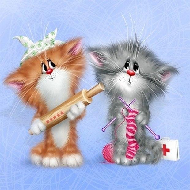 Доброй, приколы открытки с котами