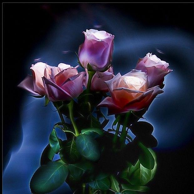Открытки, доброй ночи цветы картинки с надписями красивые