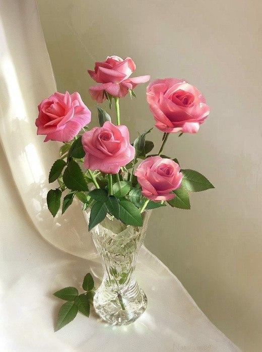 Фото с розами и вазой