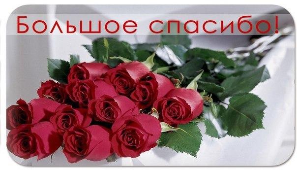 http://www.chitalnya.ru/upload3/831/337d6e9d88a3b73e5c6702794d54489e.jpg