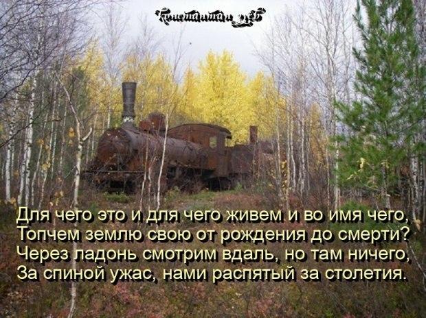 РАЗМАХИВАЯ ФЛАГОМ...