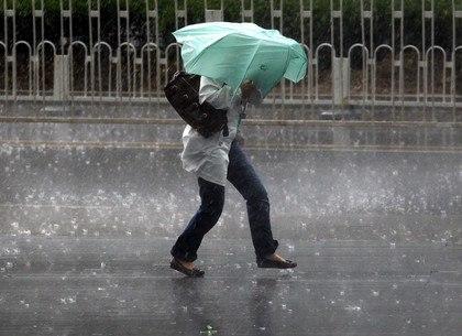 Дождь... (сердитый экс)