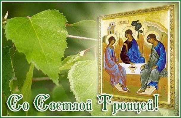 Ольга алексеева стихи пророчество
