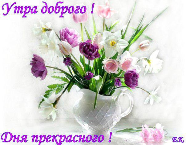 https://www.chitalnya.ru/upload3/877/88167cf63034d0bdedf7797b008917e2.jpg